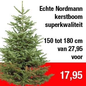 Grote Nordmann Kerstboom Warme Witte Winter Weken